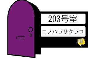 203_door