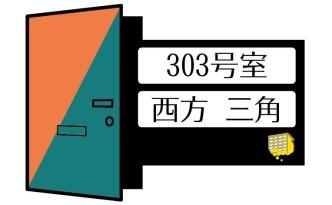 303_door