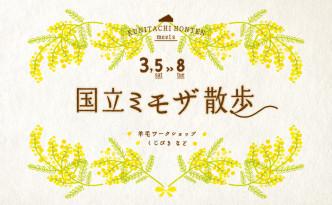 1602_国立本店_ミモザWeb宣伝用-01